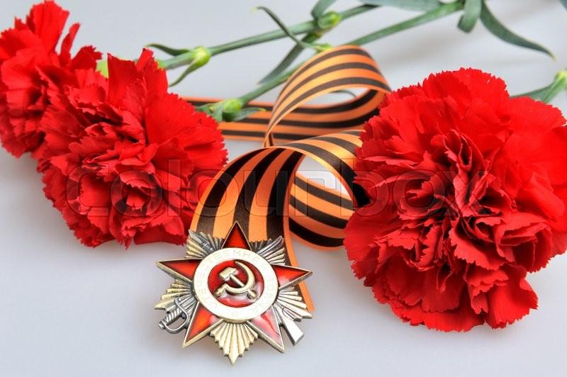 Цветы георгиевская лента картинки
